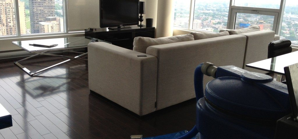 Eco Sectional Sofa Cleaning